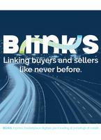 Alla scoperta di BlinkS: gli scenari. La soluzione.